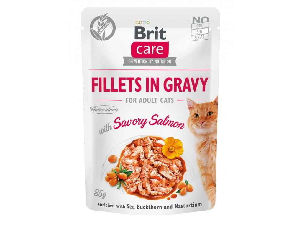 Brit Care Cat Fillets in Gravy Savory Salmon 85g